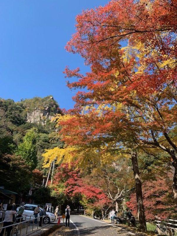 豪渓で紅葉