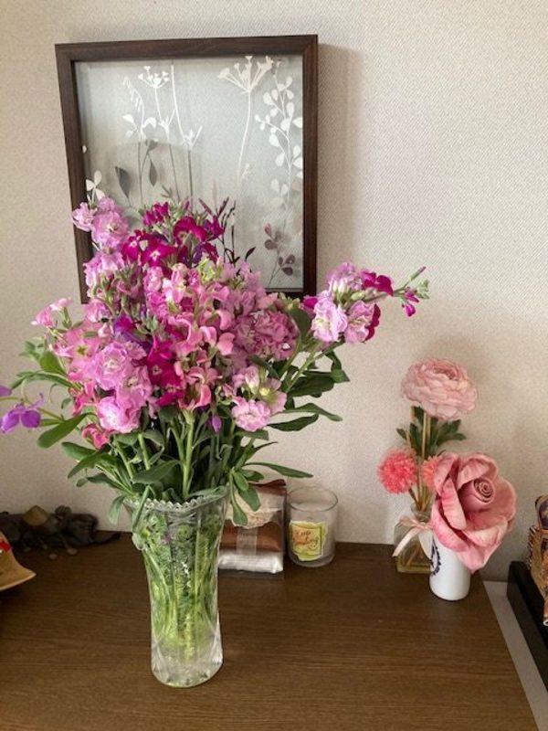 花🌸なのに、臭い匂いのストック😱