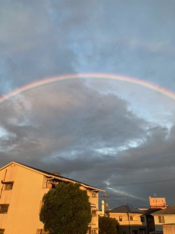 霧雨と虹🌈✨🌈